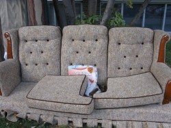 Couch on Curb: Bedbugs