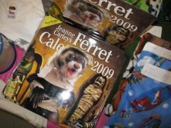 2009 Ferret Calendar