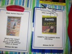Ferret auction items