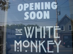 The White Monkey on Gladstone