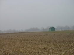 The Experimental Farm