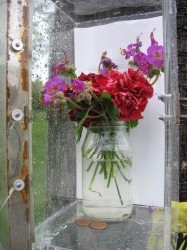 Plexiglass Flower Display