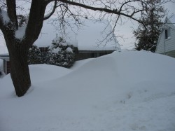 House soon buried
