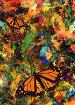 Butterfly Garden Three